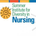 summer institute for diversity in nursing